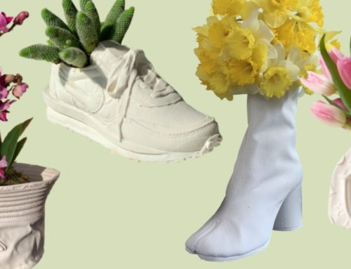 Dress Your Plants in These Cult-Favourite Pieces